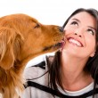 Foto Stock: Dog kissing woman