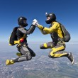 Skydiving photo. — Stock Photo #19876487