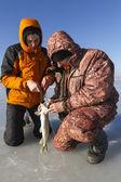 Rybolov pod ledem. — Stock fotografie