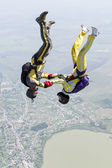 Skydiving — Foto Stock