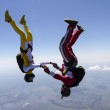 Skydiving photo. — Stock Photo #24726503