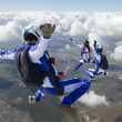 Skydiving photo. — Stock Photo #24726557