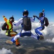 Skydiving photo. — Stock Photo #24726641