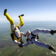 Two skydiver. — Stock Photo #43608725