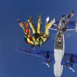 Skydivers in free style. — Stock Photo #43608949