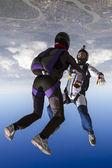 Two skydiver — ストック写真