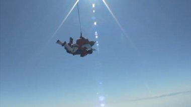 Parachutespringen video — Stockvideo