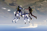 Parachutist build a figure in free fall. — Stock Photo