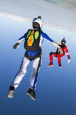 Skydivers in freefall. — Stock Photo