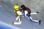 Skydivers in freefall — Stock Photo
