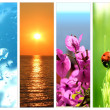Spring or summer collage from several images — Stock Photo