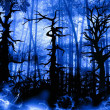 Forest dark landscape with old twisted trees — Stock Photo #49674947