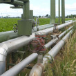 Pipelines through a field — Stock Photo