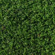 Artificial grass field - Stock Photo