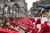 City bicycles — Photo