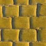 Cobblestone pavement — Stock Photo #27886859