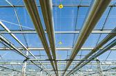 温室の内部 — ストック写真
