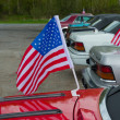 Stock Photo: Americflag on car