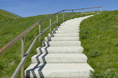 Concrete stairs — Stock Photo