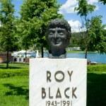 Постер, плакат: Bust of Roy black