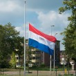Dutch flag — Stock Photo