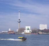 Euromast in rotterdam — Stock Photo
