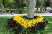 Park in istanbul — Stock Photo