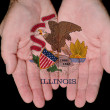 Illinois In Our Hands — Stock Photo