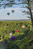 Flying Down The Gorge At Letchworth State Park — Stock Photo