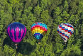 Flying The Gorge At Letchworth State Park — Stock Photo