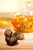 Kvetoucí čaj žárovky closeup — Stock fotografie