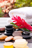 Outdoor zen wellness with soaps and ginger flower — 图库照片