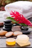 用红姜花和肥皂的户外禅健身。 — 图库照片
