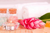 Spa concept with ginger flower and bath salts close up — Stock Photo