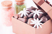 Wellness gift in a bronze box with bath salts close up — Stock Photo