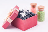 Wellness red gift box with white Jasmine flowers and bath salts — Stock Photo
