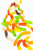 Wriggly gummy worms candy close up — Stock Photo