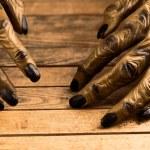 Werewolf hands for Halloween close-up — Stock Photo