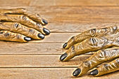 Werewolf hands for Halloween Hdr effect — Stock Photo