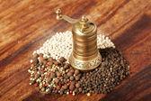 各种类型的胡椒与手磨机 — 图库照片