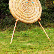 Stock Photo: Straw circle archery target with wooden arrows in it as conpetition concept