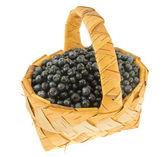 Arándano fresco en una cesta jacana. — Foto de Stock