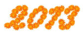 Number 2013 made of flowers of a calendula. — Stock Photo