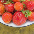 Freshs strawberry. — Stock Photo #12536528