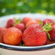 Royalty-Free Stock Photo: Freshs strawberry.
