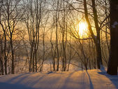 Mooie winterochtend — Stockfoto