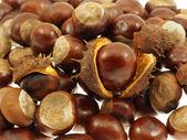 Chestnut fruits in bulk. — Stock Photo