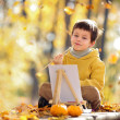 Cute little boy painting in golden autumn park — Stock Photo
