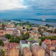 Riga, Latvia, cityscape from Academy of Sciences — Stock Photo #14132041
