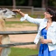 Young attractive womfeeding lama — Stock Photo #14943529